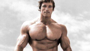 arnold-schwarzenegger-champion-bodybuilder